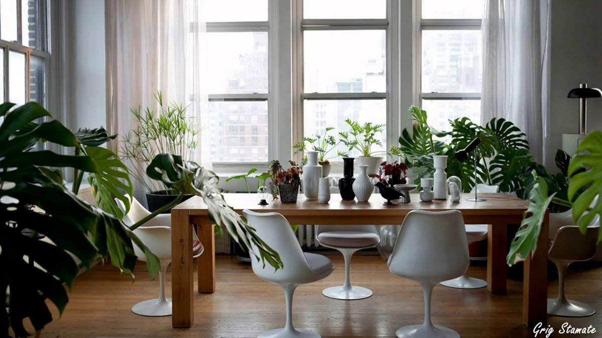 plants in decoration - گرمایش و سرمایش در طراحی داخلی