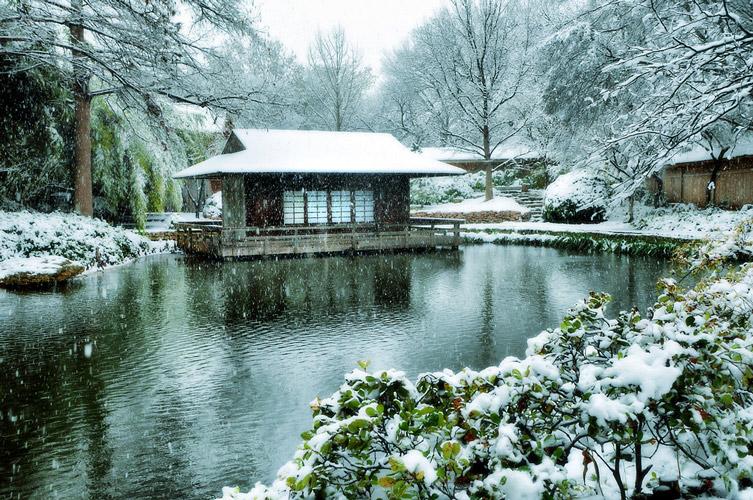 garden in winter - نگاهی به باغسازی شرقی و غربی