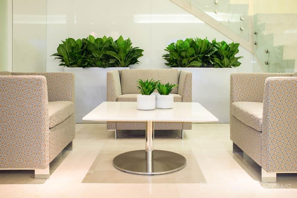 interior design indoor plants - جزئیات مربوط به اجزای فضاهای داخلی