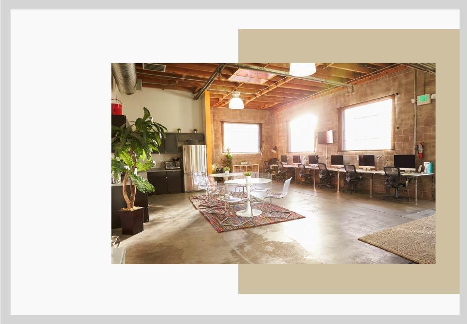 Natural light and greenery office decoration - نکاتی برای طراحی فضای کار و افزایش بهره وری شما
