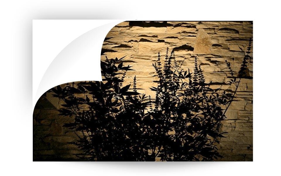 Silhouetting - نورپردازی لنداسکیپ