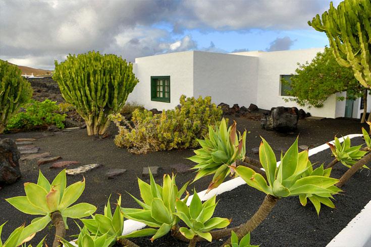 decorasion giyahan kenar estakhr16 - بهترین گیاهان مناسب برای اطراف استخر